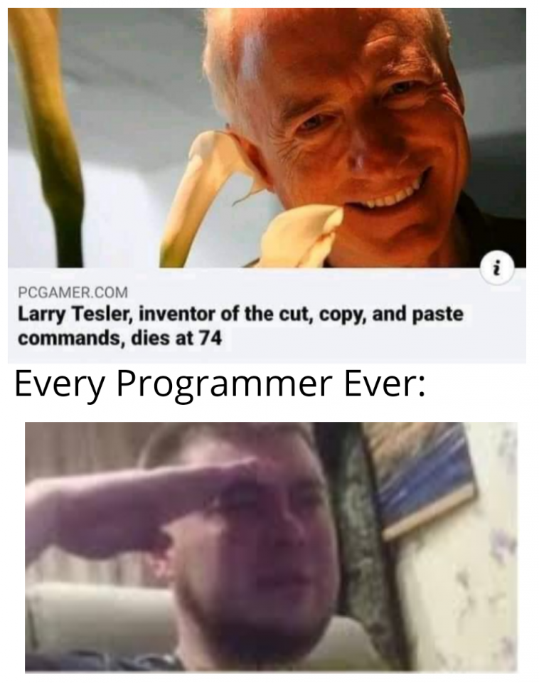 *copies and pastes crying emoji into comments*   programmer-memes, program-memes, command-memes, comment-memes   ProgrammerHumor.io