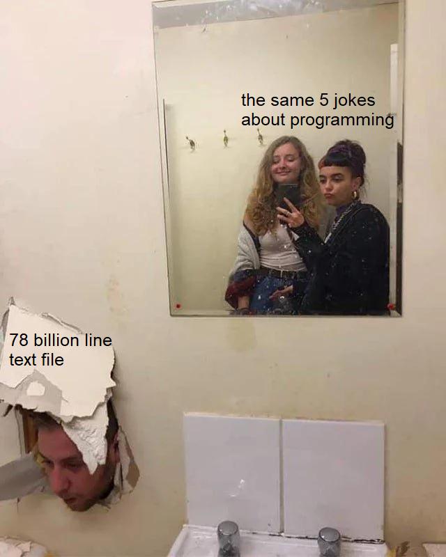 A new contender has appeared   programming-memes, program-memes   ProgrammerHumor.io