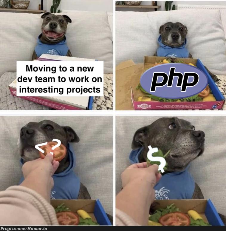 Getting my hopes up   rest-memes   ProgrammerHumor.io