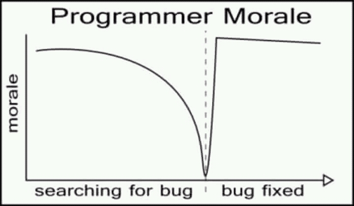 The only true graph. | programmer-memes, program-memes, bug-memes, fix-memes, bug fix-memes, search-memes | ProgrammerHumor.io