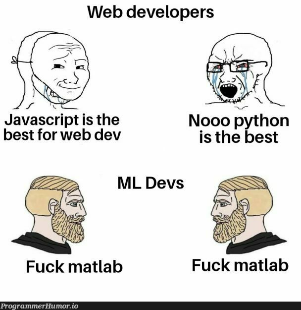 Some generic title | developer-memes, javascript-memes, web developer-memes, java-memes, python-memes, web-memes, devs-memes, matlab-memes, ML-memes | ProgrammerHumor.io
