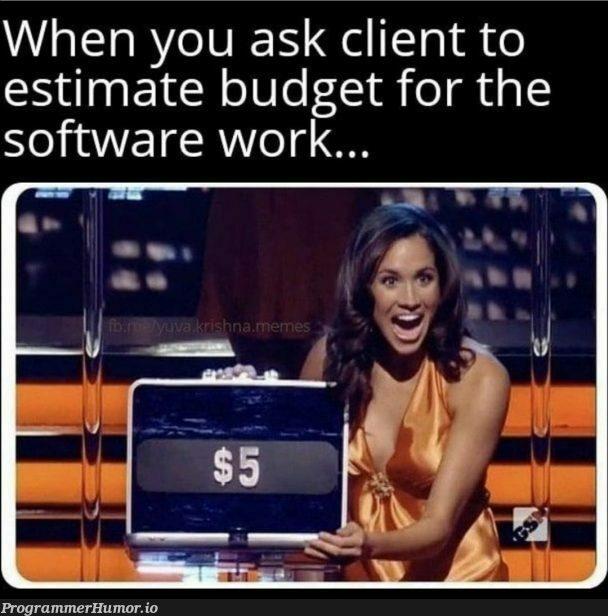 Budget | software-memes, cli-memes | ProgrammerHumor.io