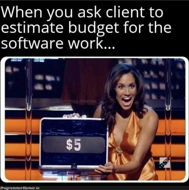 Budget   software-memes, cli-memes   ProgrammerHumor.io