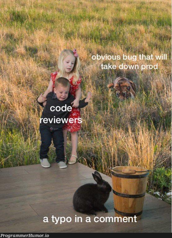 nit: newline | comment-memes | ProgrammerHumor.io