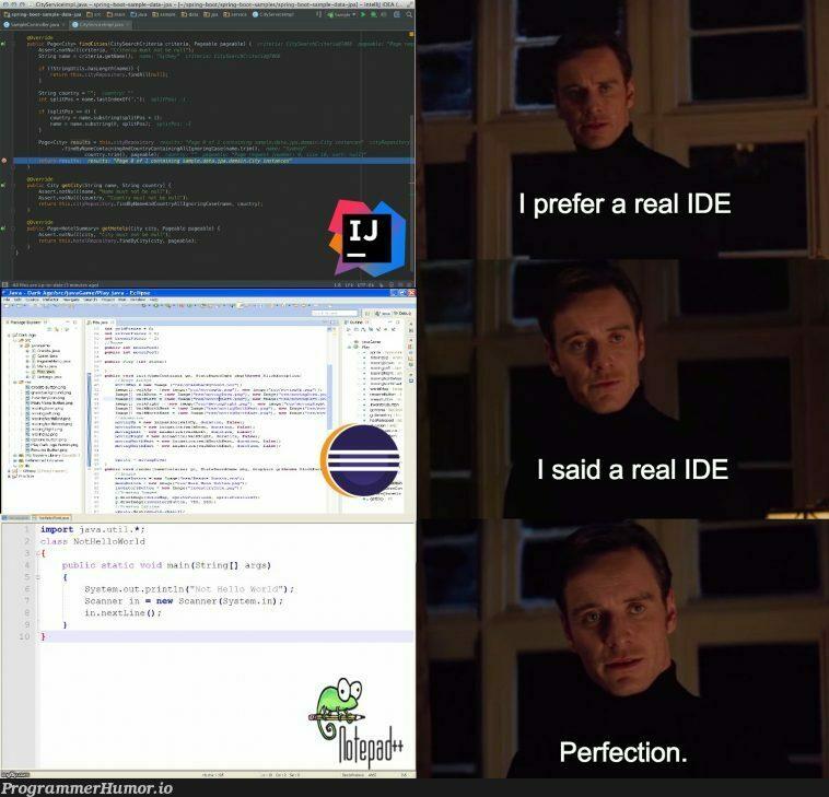 The real IDE | ide-memes | ProgrammerHumor.io