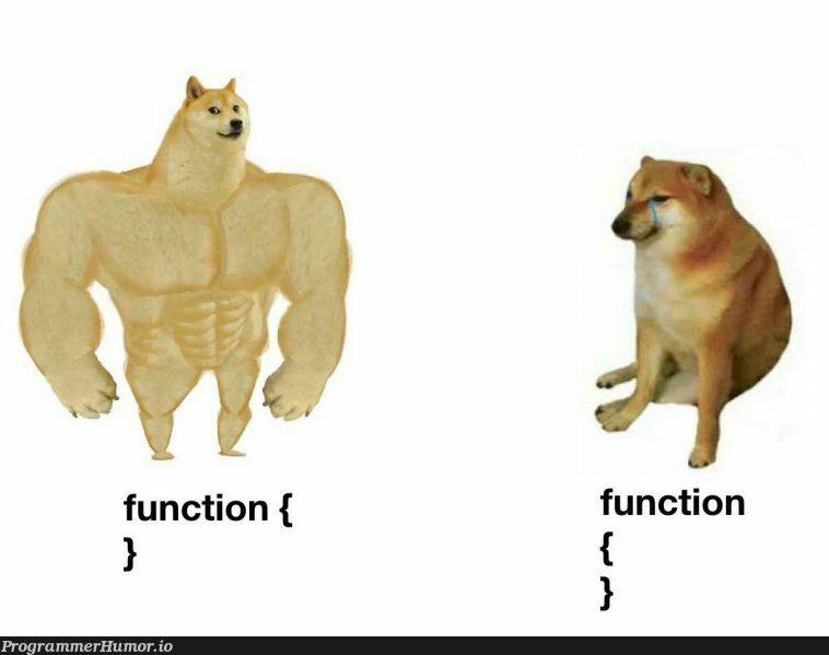 I was born this way | function-memes | ProgrammerHumor.io