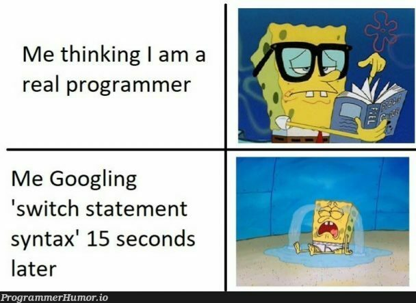 Can you Relate | programmer-memes, program-memes | ProgrammerHumor.io