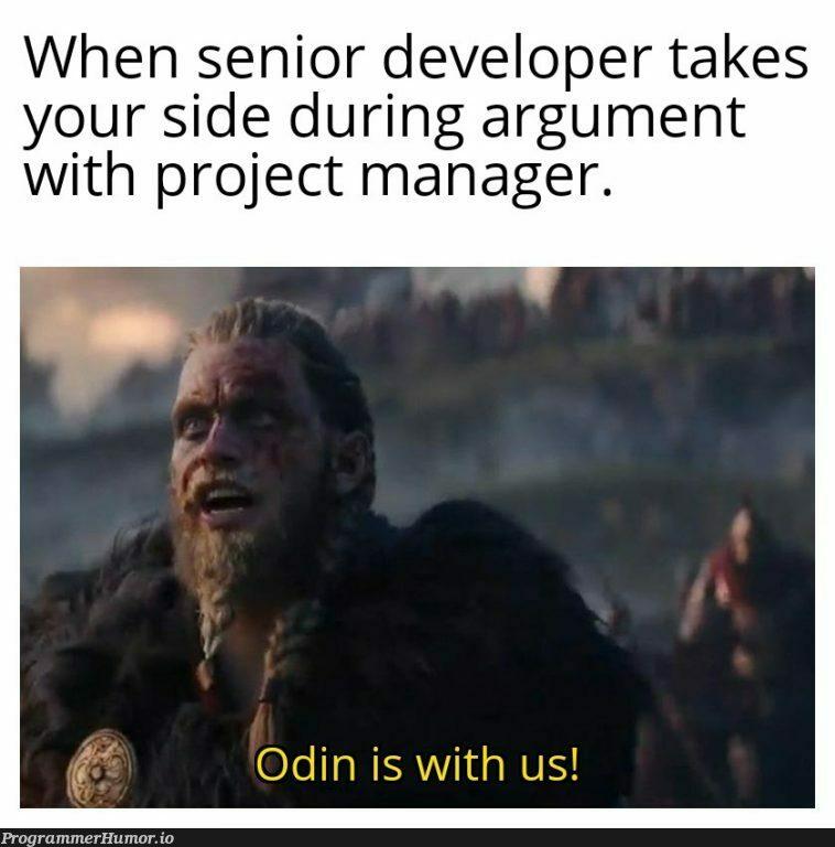 Thank you senior folks. | developer-memes, ide-memes, manager-memes | ProgrammerHumor.io