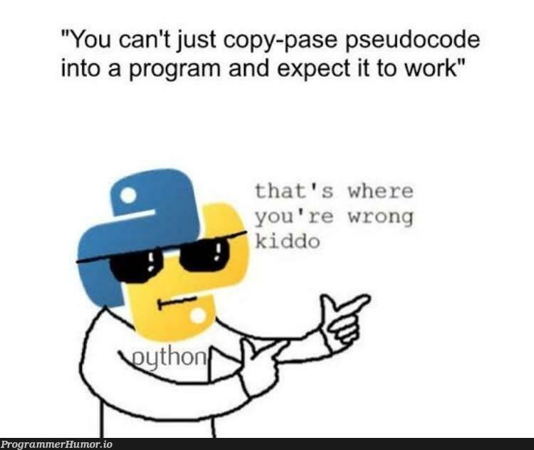 Python be like... | code-memes, python-memes, program-memes, IT-memes, Pseudocode-memes | ProgrammerHumor.io