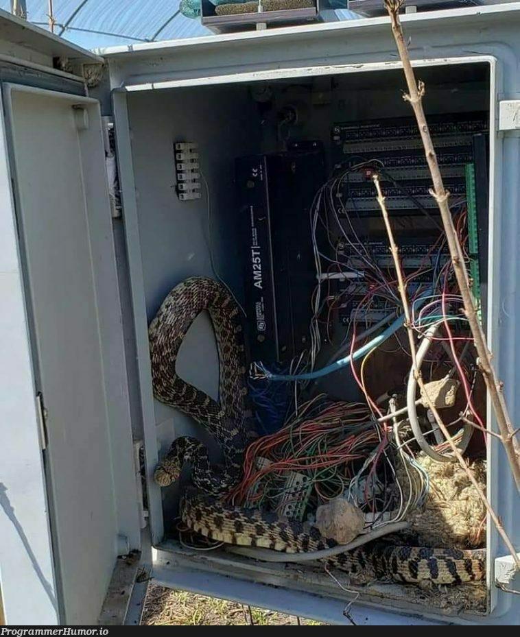 How do you uninstall python from this environment   python-memes   ProgrammerHumor.io