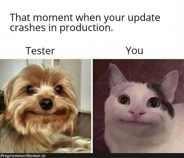 I exactly had the same expression   test-memes, express-memes, date-memes, production-memes, crash-memes, product-memes   ProgrammerHumor.io