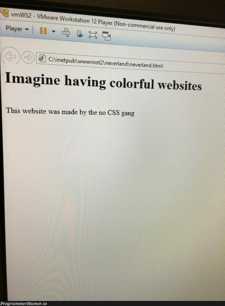 My friend asked me how to stylize his website   css-memes, web-memes, website-memes, c-memes, cs-memes   ProgrammerHumor.io