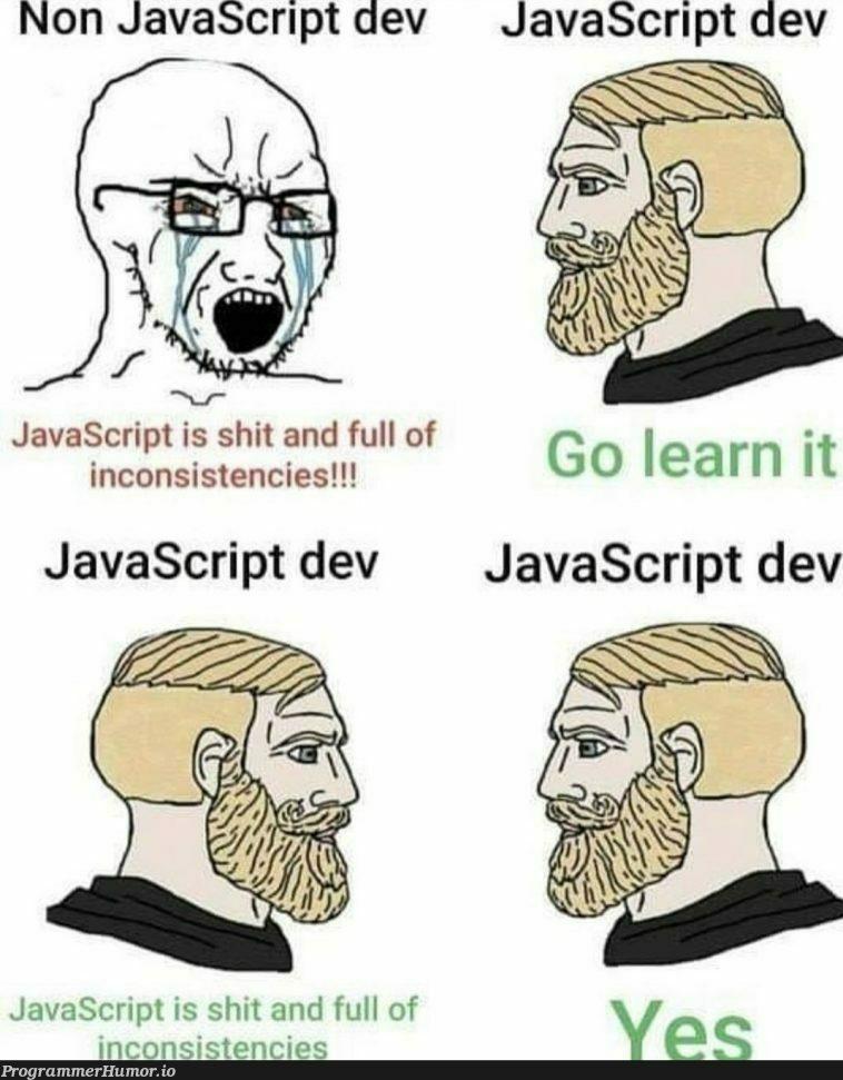 Typescript gang | javascript-memes, java-memes, javascript dev-memes, typescript-memes, IT-memes | ProgrammerHumor.io