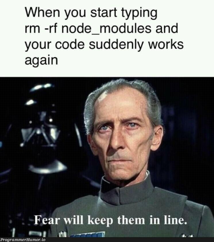 Hail rm -rf | code-memes, node-memes, node_modules-memes, rm -rf-memes | ProgrammerHumor.io