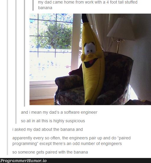 The Banana Programmer | programmer-memes, program-memes | ProgrammerHumor.io