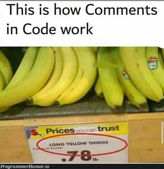Commented | code-memes, comment-memes, rust-memes | ProgrammerHumor.io