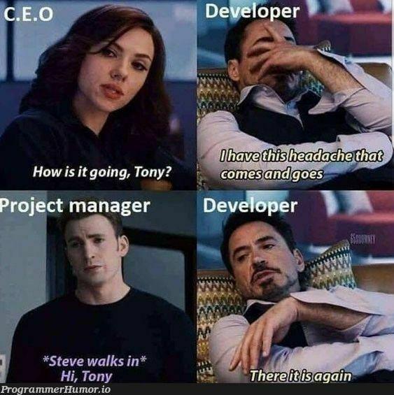 Life of a Developer   developer-memes, manager-memes   ProgrammerHumor.io