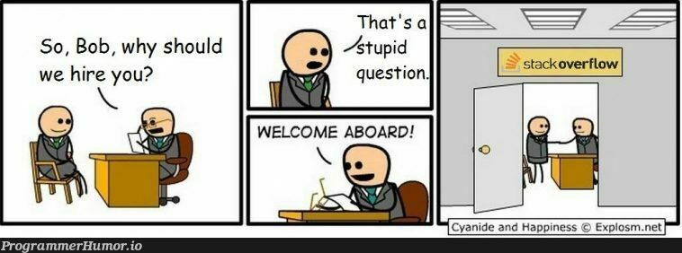 Assume that SO employees also answer questions...   .net-memes, ide-memes   ProgrammerHumor.io