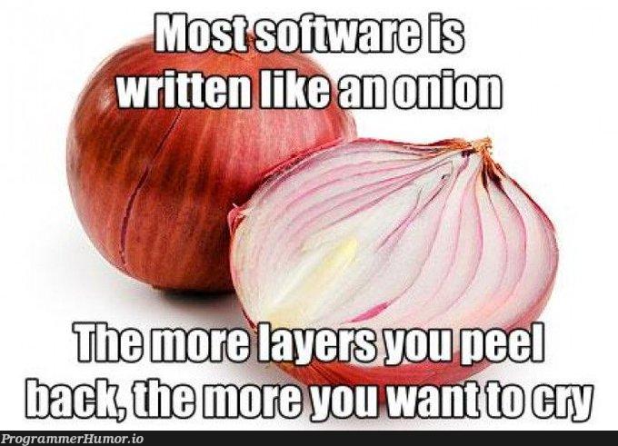 Most software is written like an opinion   software-memes   ProgrammerHumor.io