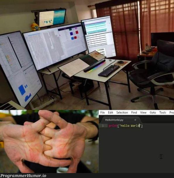h e l l o. w o r l d   ProgrammerHumor.io