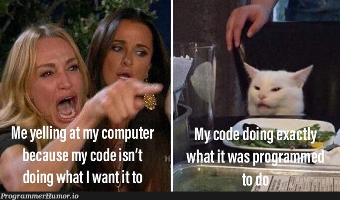 It is what it is.   IT-memes   ProgrammerHumor.io