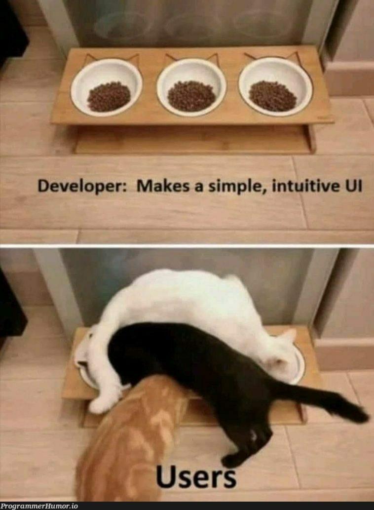 Idiot proofing is a necessity   ProgrammerHumor.io