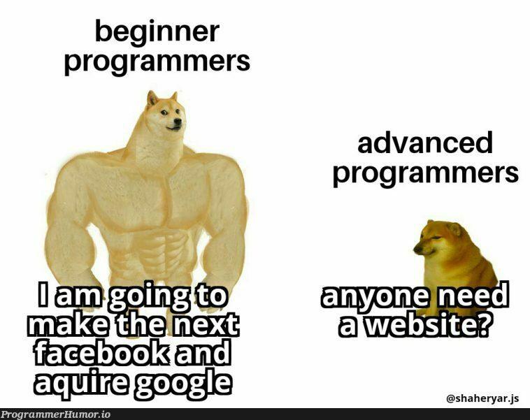 Im feeling the symptoms already 😮😭   programmer-memes, program-memes, ML-memes   ProgrammerHumor.io