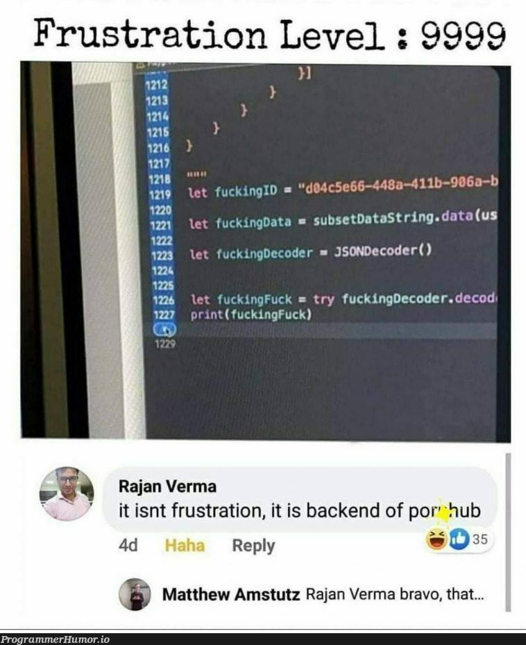 Man knows how to name his variables | code-memes, coder-memes, backend-memes, variables-memes, try-memes, data-memes, json-memes, string-memes, IT-memes | ProgrammerHumor.io