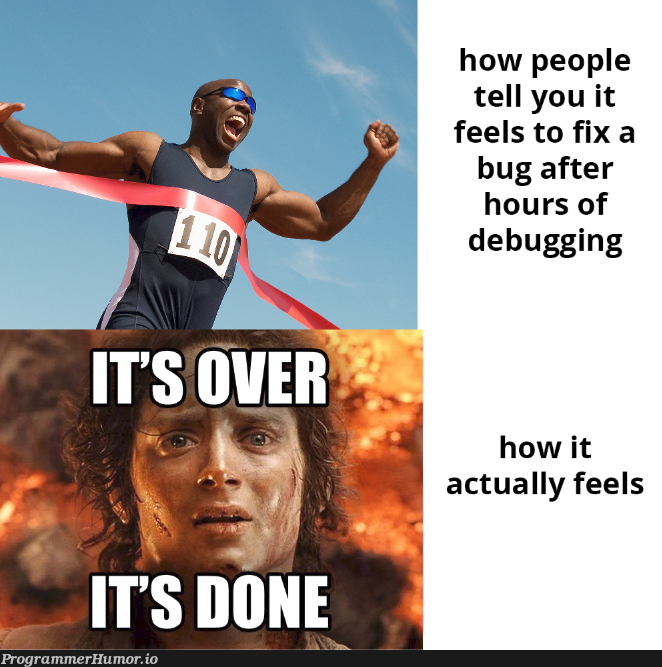 how people tell you it feels to fix a bug after hours of debugging | debugging-memes, bug-memes, debug-memes, fix-memes, IT-memes | ProgrammerHumor.io
