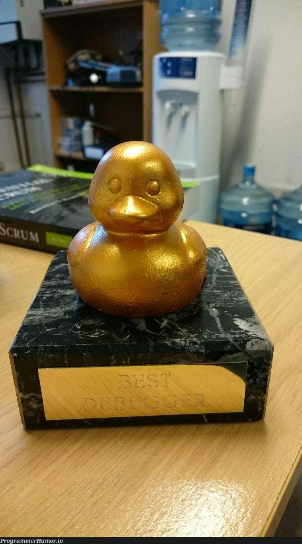 The golden rubber duck award of 'Best Debugger'   bug-memes, debug-memes, debugger-memes   ProgrammerHumor.io
