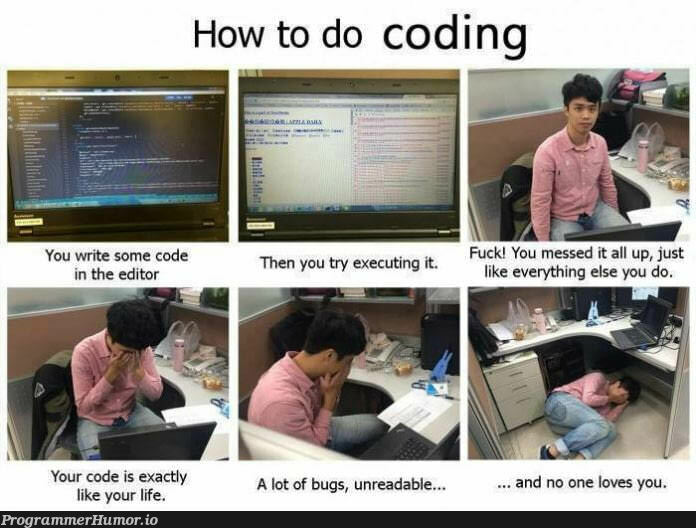 Sometimes I don't even know why I try.   code-memes, try-memes, bugs-memes, bug-memes, IT-memes   ProgrammerHumor.io