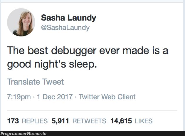 The best debugger in the world   web-memes, bug-memes, debug-memes, cli-memes, debugger-memes, twitter-memes, retweet-memes   ProgrammerHumor.io