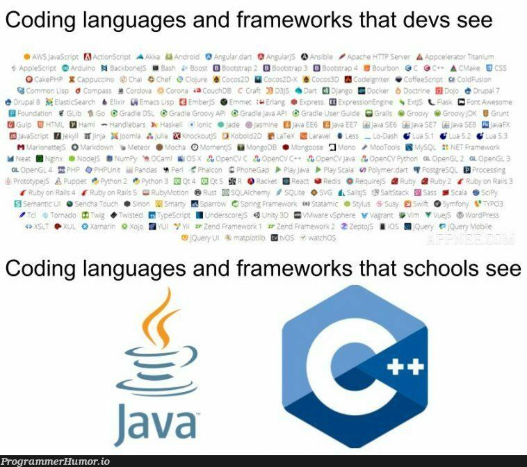 Devs VS. Schools | coding-memes, java-memes, devs-memes, language-memes, framework-memes | ProgrammerHumor.io