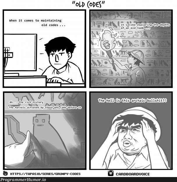 Maintaining old codes | code-memes, git-memes, c-memes, IT-memes | ProgrammerHumor.io