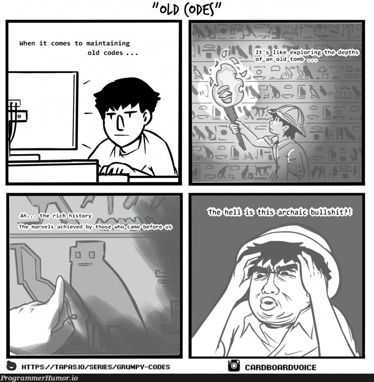 Maintaining old codes   code-memes, git-memes, c-memes, IT-memes   ProgrammerHumor.io