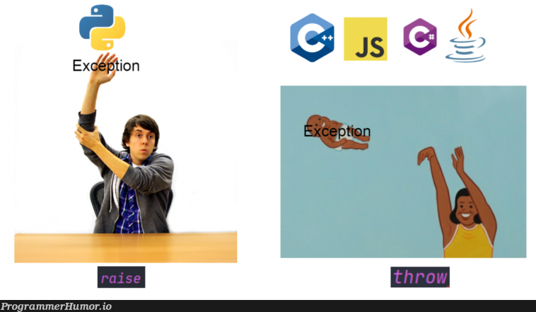 try catch throw finally   try catch-memes, try-memes, catch-memes   ProgrammerHumor.io