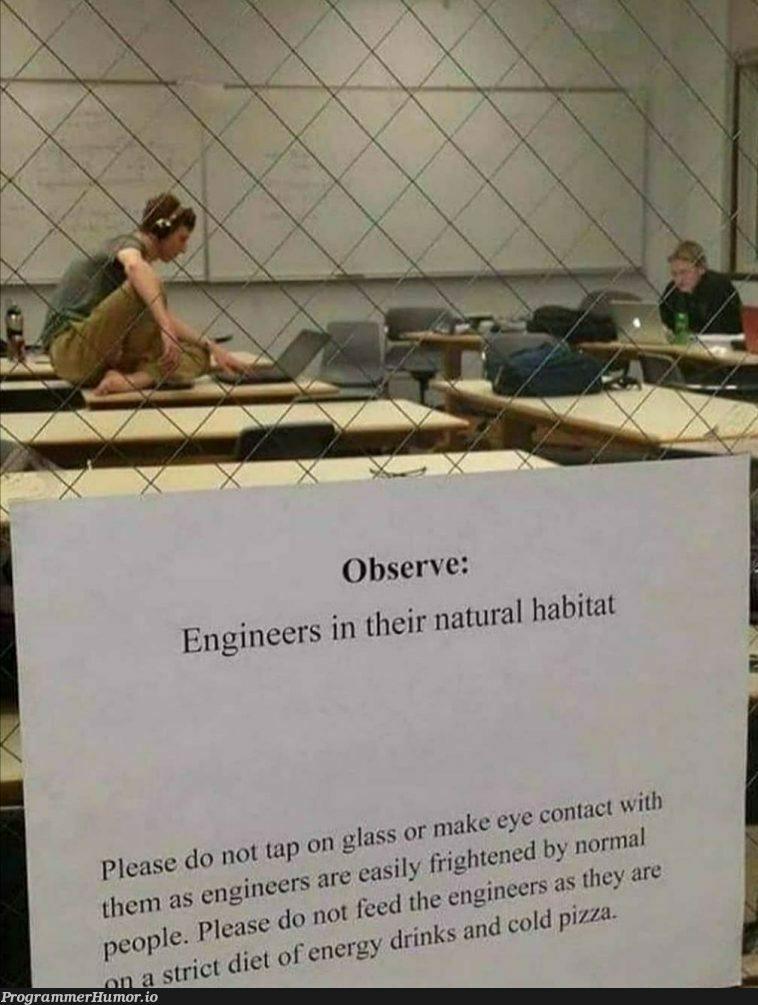 A sub-species if you will...   engineer-memes   ProgrammerHumor.io