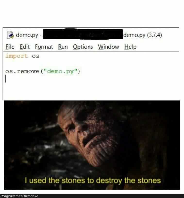I used a program to destroy the program | program-memes | ProgrammerHumor.io