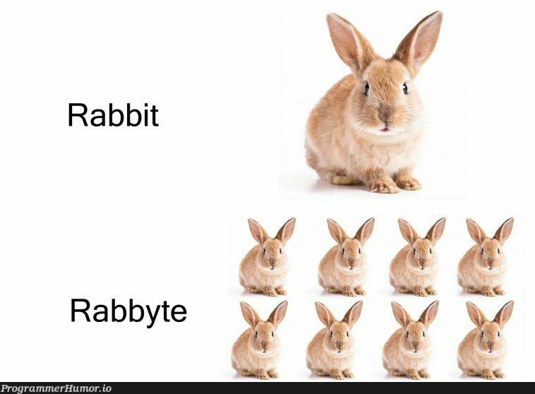 just a helpful unit conversion... | version-memes | ProgrammerHumor.io