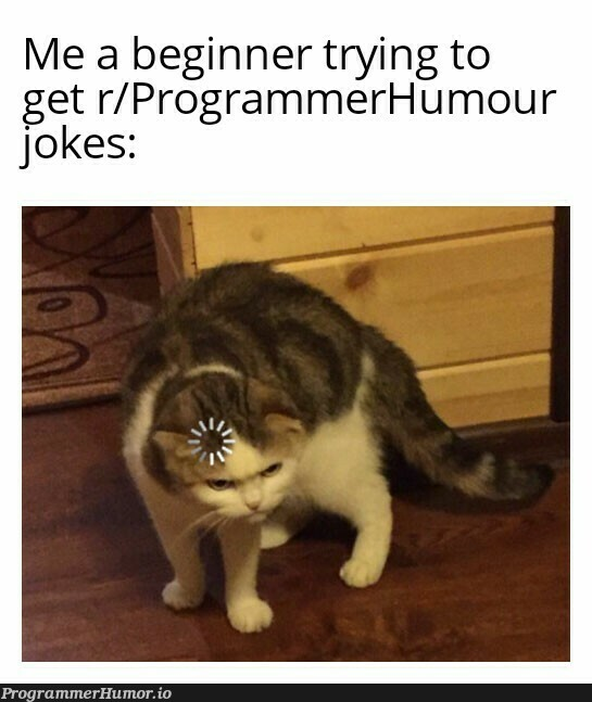 It gets worse when you see the comments | programmer-memes, program-memes, try-memes, IT-memes, comment-memes | ProgrammerHumor.io