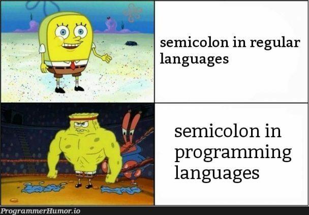 This meme; | programming-memes, program-memes, semicolon-memes, language-memes, programming language-memes | ProgrammerHumor.io