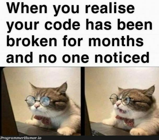 Do I tell someone? | code-memes | ProgrammerHumor.io