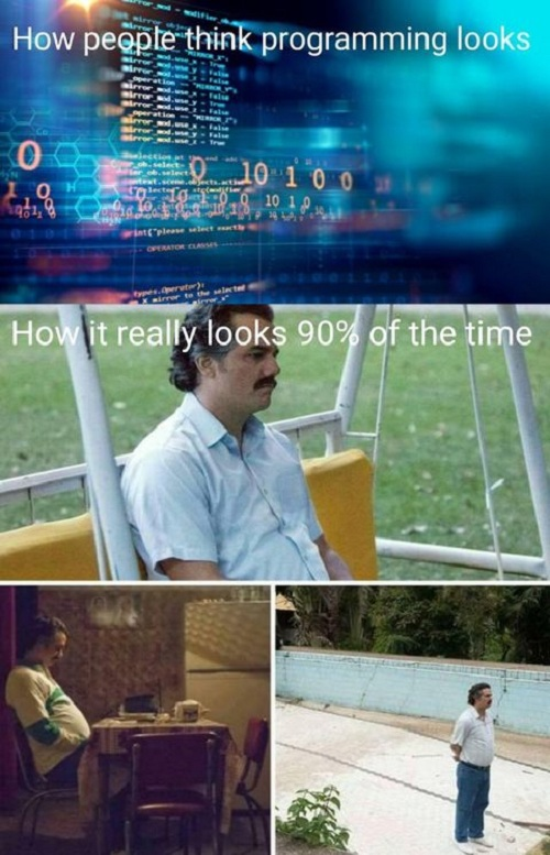 What People thinks about Programming VS Reality | programming-memes, program-memes | ProgrammerHumor.io
