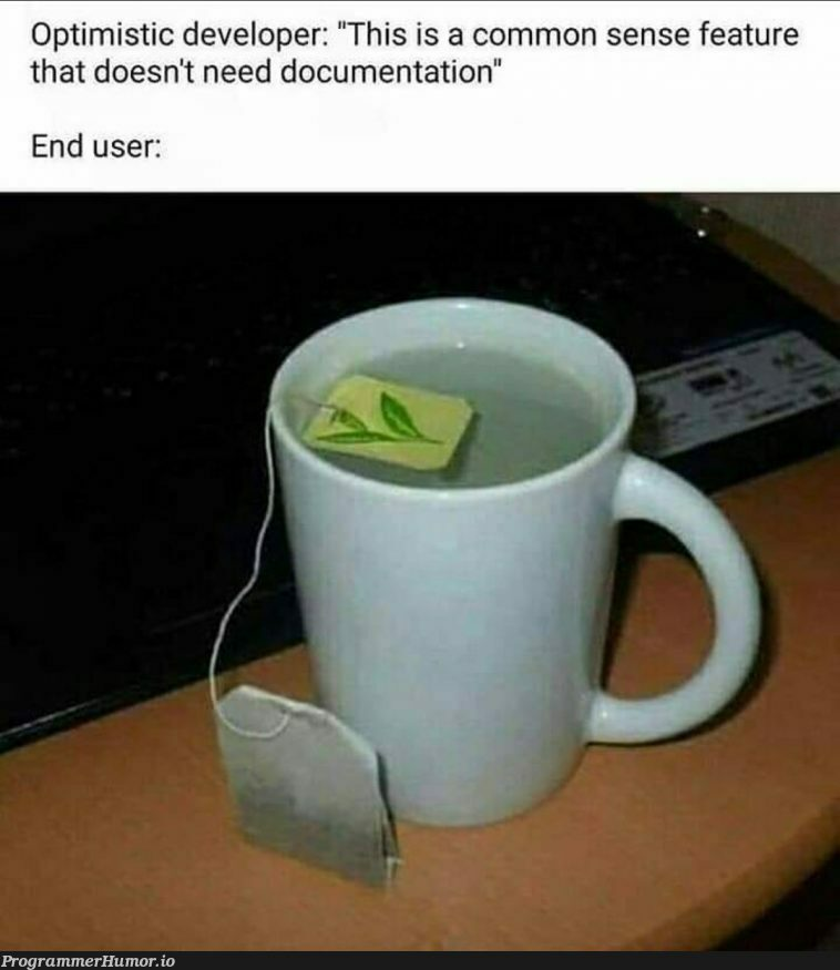 Documentation is very important. | developer-memes, documentation-memes, feature-memes | ProgrammerHumor.io