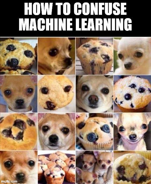 Muffin Dog | machine learning-memes, machine-memes, mac-memes | ProgrammerHumor.io