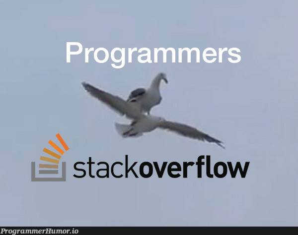 Don't know what I'd do without stackoverflow | stackoverflow-memes, stack-memes, overflow-memes | ProgrammerHumor.io