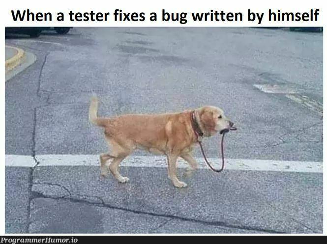 No caption needed..... | test-memes, bug-memes, fix-memes | ProgrammerHumor.io