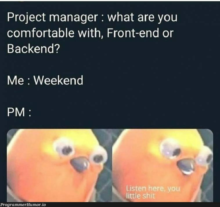 Project manager. | backend-memes, front-end-memes, manager-memes | ProgrammerHumor.io