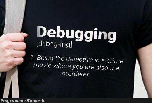 Debugging explained   debugging-memes, bug-memes, debug-memes   ProgrammerHumor.io
