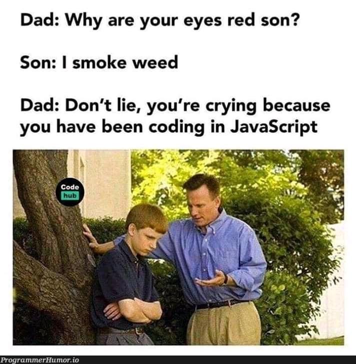Sorry dad ;_;   coding-memes, javascript-memes, java-memes   ProgrammerHumor.io